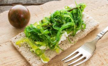 Algi - skarbnica substancji odżywczych